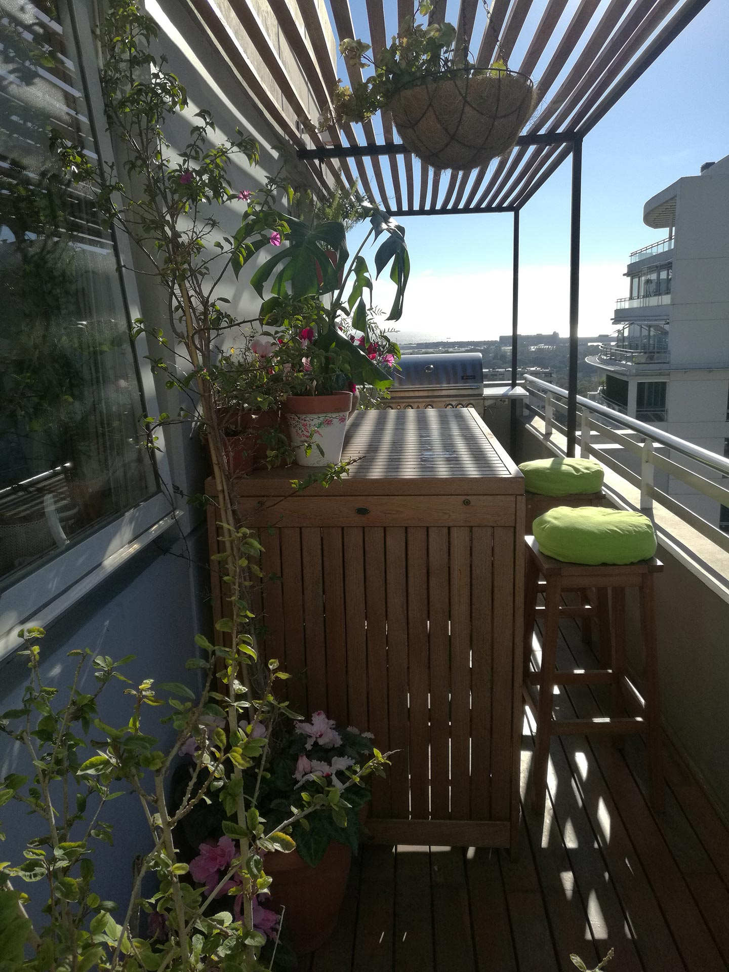 Sadhana Garden Arte Vida Plantas Materos Flores Matas Balcones Decoración Deco Art Decor Mantenimiento Buenos Aires BsAs Argentina Diseño Natural Nature Plants